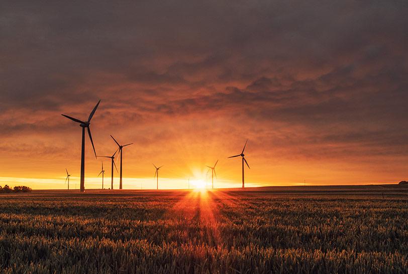 Team building sostenible - Sostenibilidad