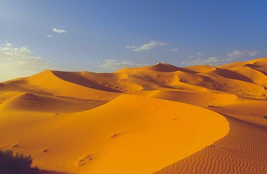 Desert retreat: liderar la transformación (Dunas)
