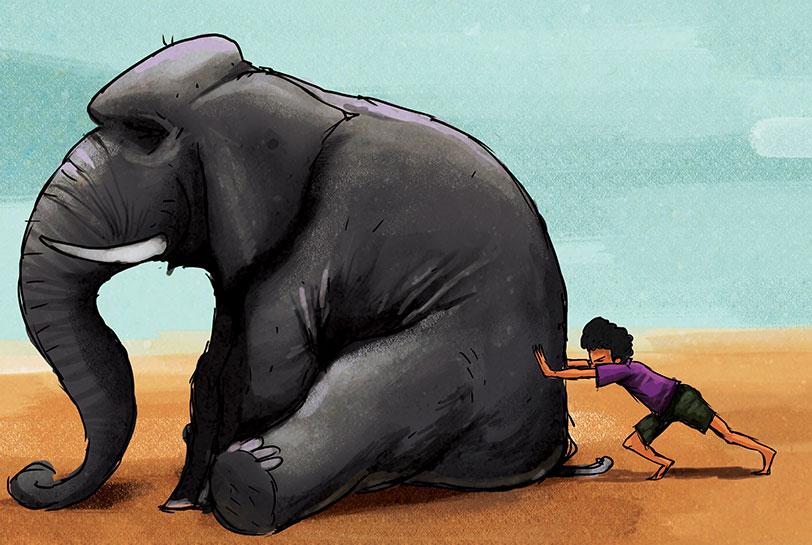 Mover al elefante: la necesidad de agilidad y adaptación al cambio - Portada