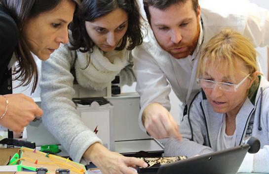 Proyecto C: team building en escape room (Experiencia Grupo)