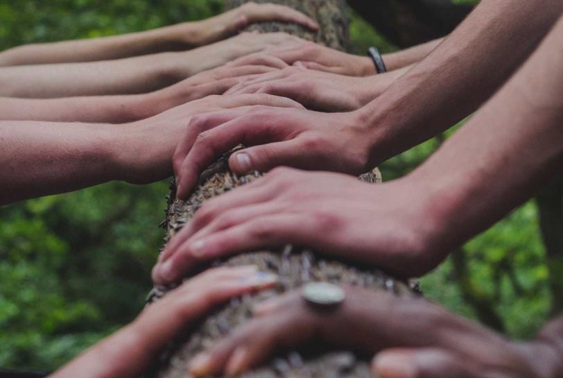Comunicación efectiva o la clave para liderar equipos cohesionados - Crecer en equipo naturalmente